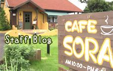 カフェレストラン ソラのブログ